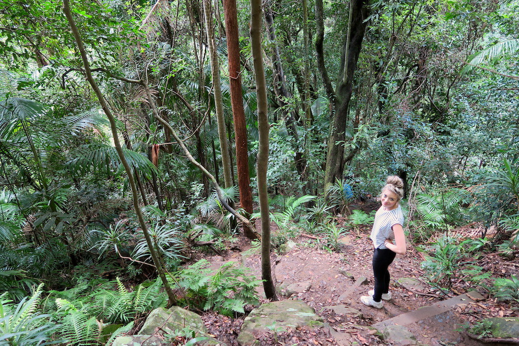 Bushwalking to Gap Creek Waterfall in New South Wales