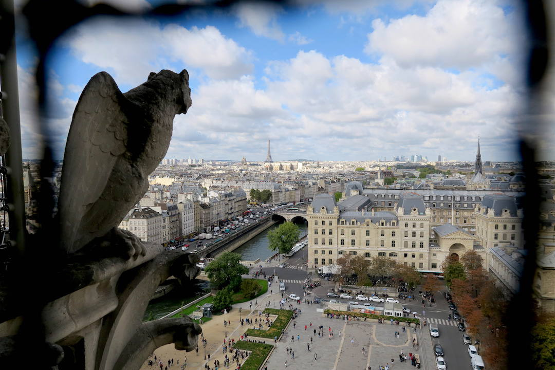 View from Notre Dame Cathedral, Paris