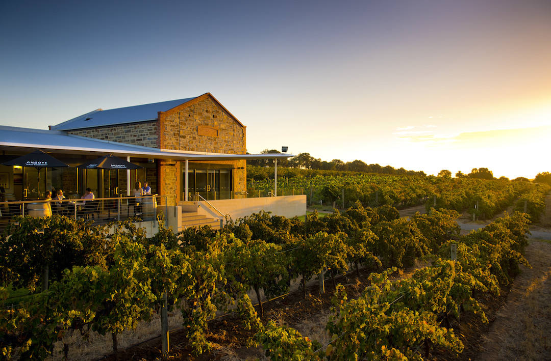 Angove Winemakers, McLaren Vale, South Australia