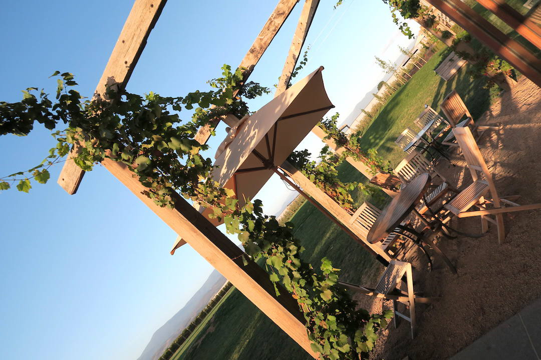 Yarra Valley wine tour: 5 wineries and dinner