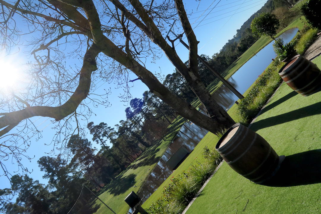 South Australia's best winery lunch, Maximilian's Restaurant, Sidewood Estate, Verdun, Adelaide Hills