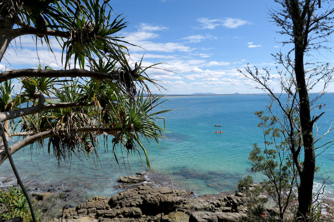 things to do in Noosa, Noosa National Park, Queensland