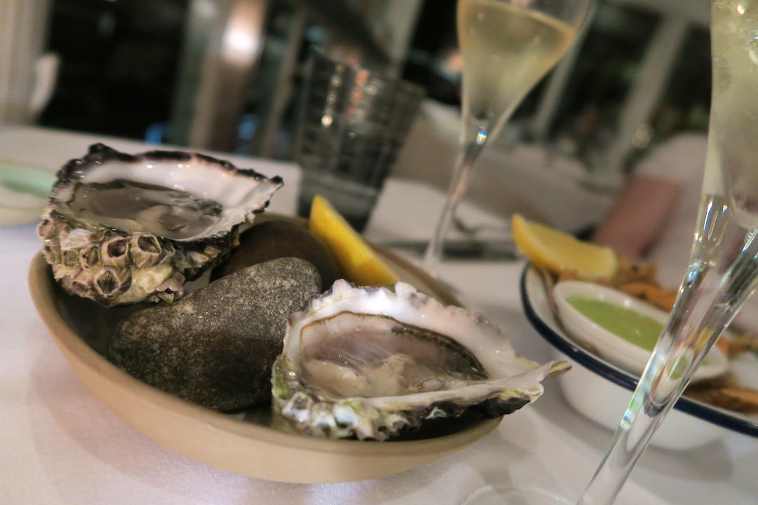 Best places to eat and drink in Noosa, Oysters, Rickys, Noosa, Queensland