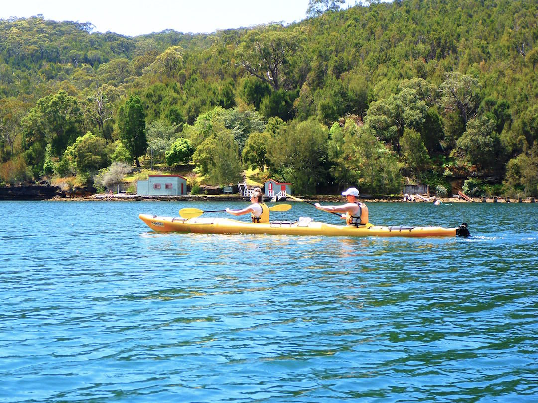 sydney-harbour-kayaks-middle-harbour-eco-tour-8