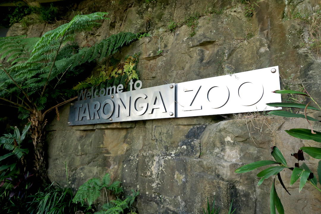 Entrance, Taronga Zoo, Sydney, Australia