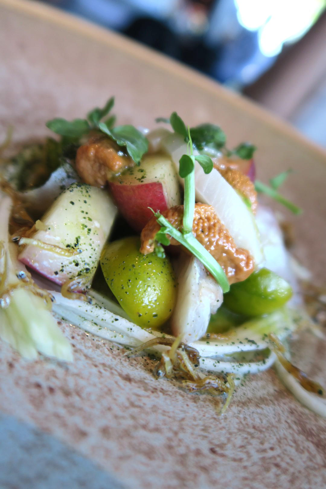 kingfish-ceviche-aubergine-griffith-canberra-act