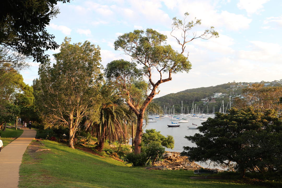 things to do in Sydney, Spit Bridge to Manly Walking Trail, Sydney