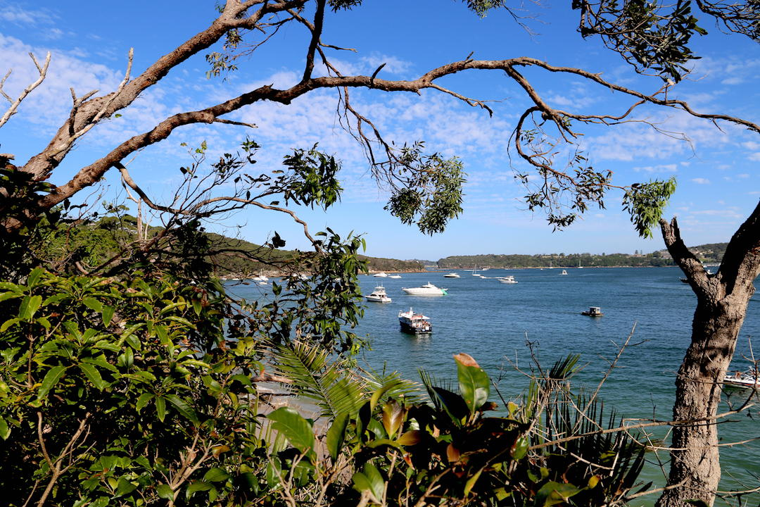 Sydney's best walking trail: Spit Bridge to Manly