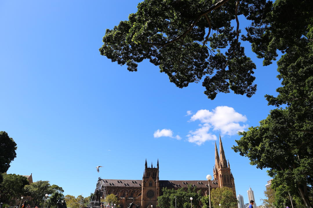 A free walking tour of Sydney, St Mary's Cathedral, Hyde Park, Sydney