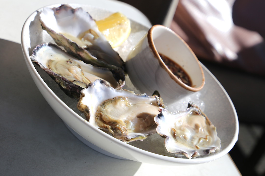 Oysters, Henry Deane, Hotel Palisade, Millers Point, Sydney