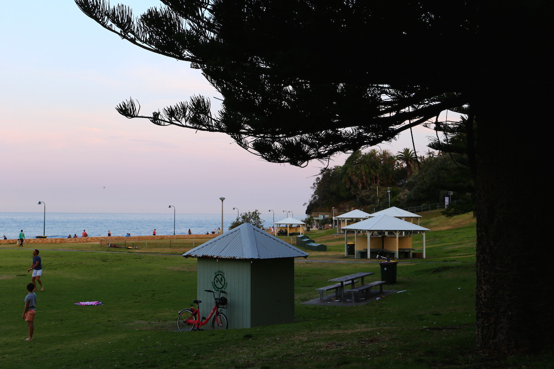 Picnic in Bronte Park, Sydney, New South Wales