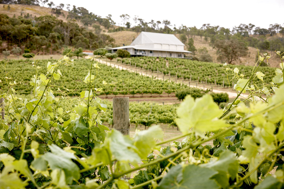 Pyrenees wine region, Ballarat Victoria