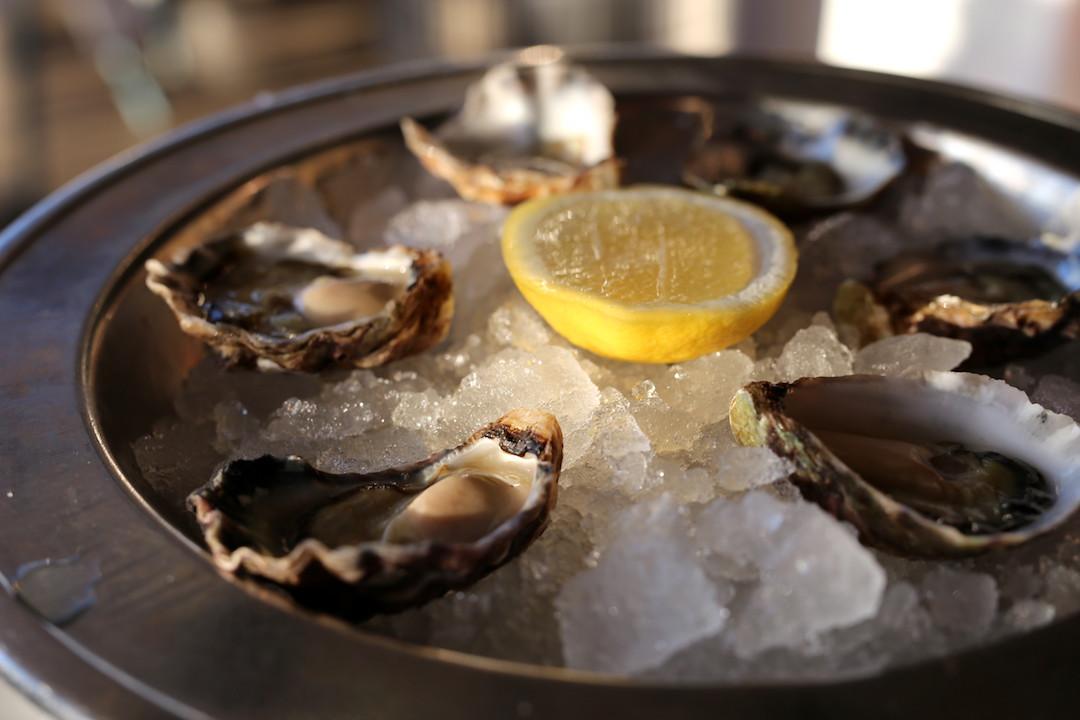 Oysters, Otto Ristorante, Finger Wharf, Woolloomooloo, Sydney