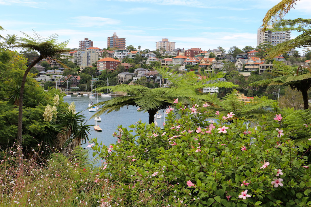 Lex and Ruby Graham Garden, Lower North Shore, Sydney, Cremorne Point to Taronga Zoo walk