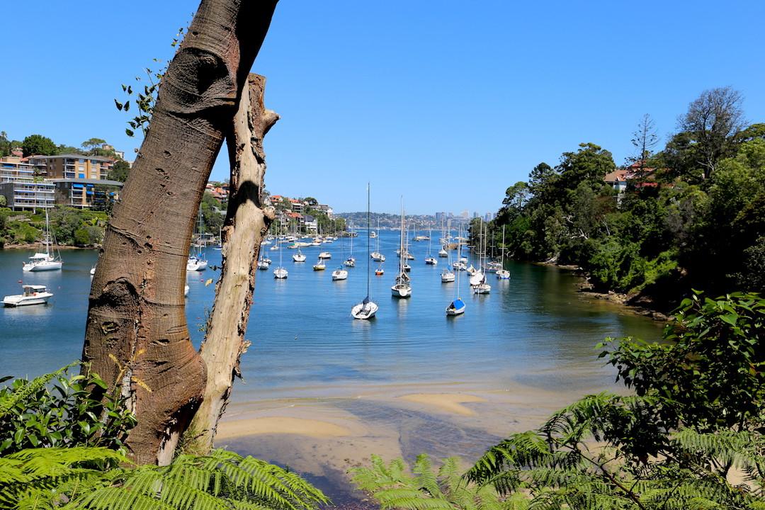 Mosman Bay, Lower North Shore, Sydney, Cremorne Point to Taronga Zoo walk