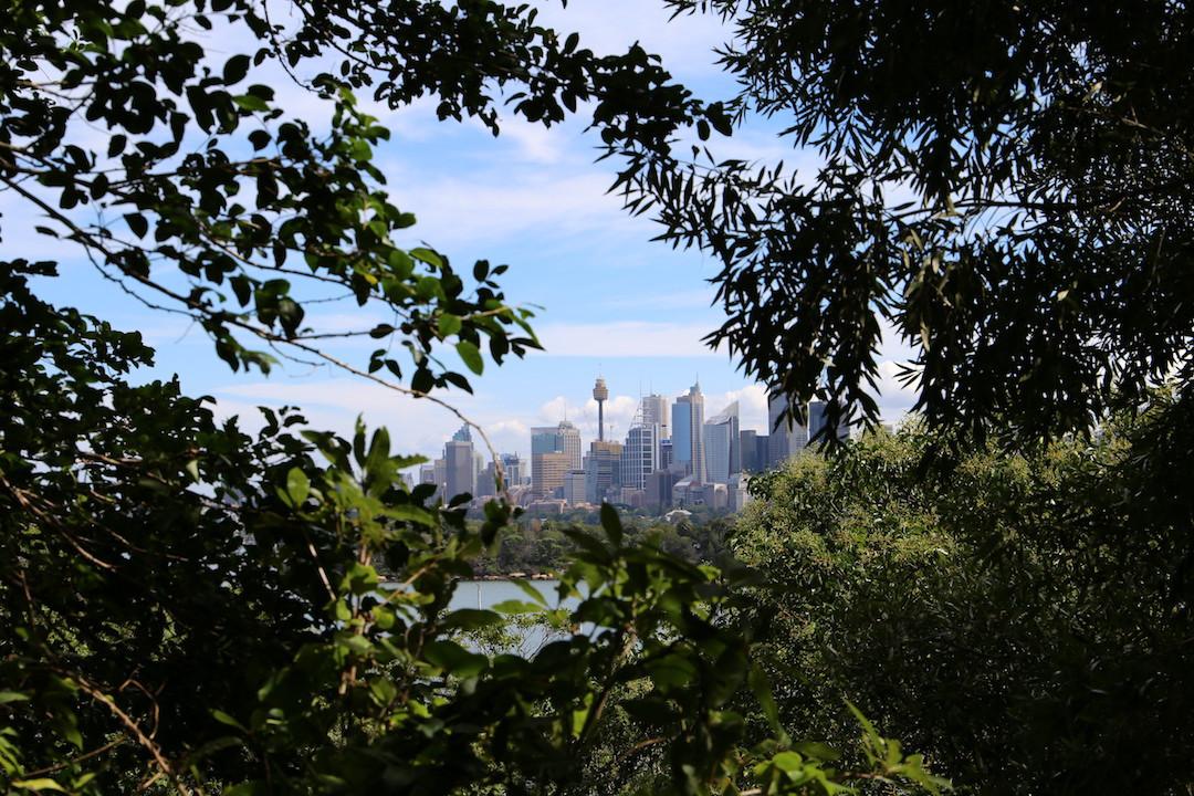 Sydney city skyline, Lower North Shore, Sydney, Cremorne Point to Taronga Zoo walk